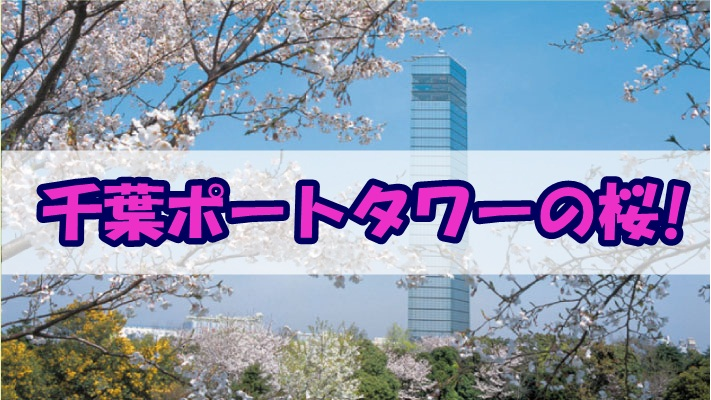 千葉ポートタワーの桜