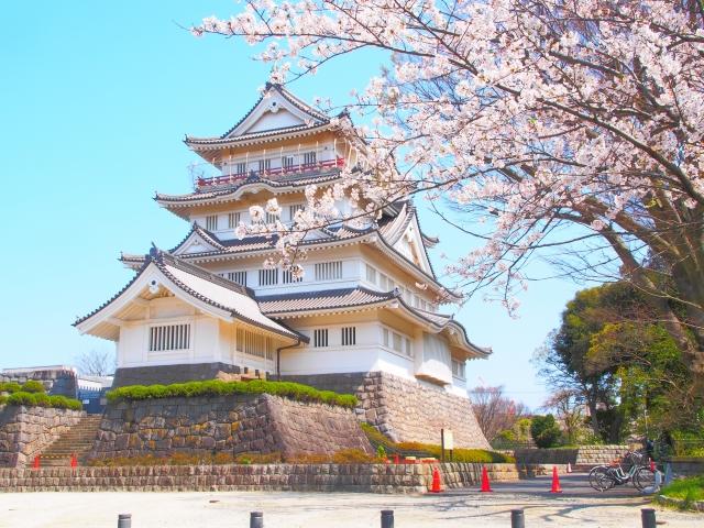 千葉城の桜