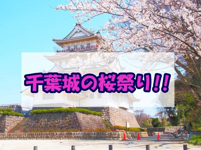 千葉城の桜祭り