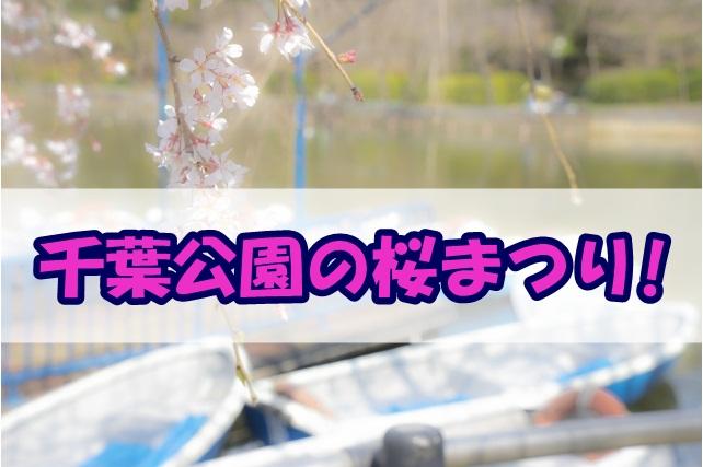 千葉公園の桜まつり