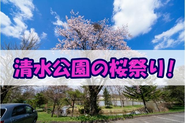 清水公園の桜祭り