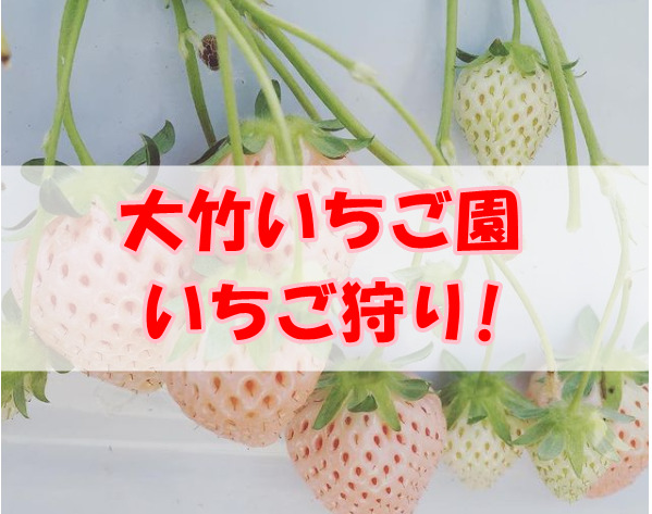 大竹いちご園