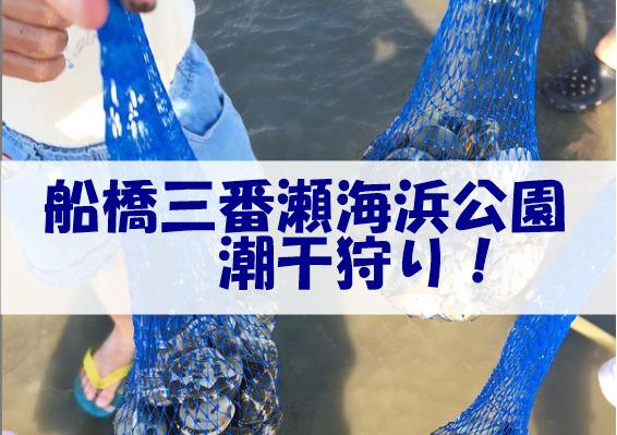 船橋三番瀬海浜公園潮干狩り