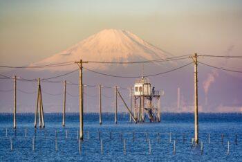 江川海岸潮干狩り